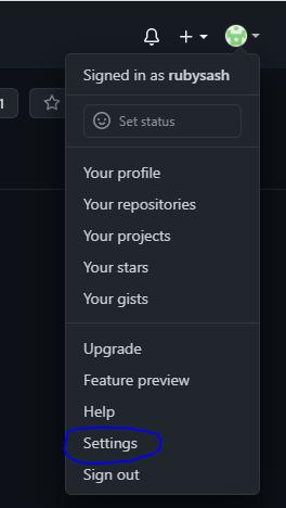 Git Hub Settings