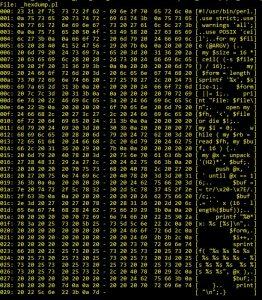 Hex Dump with Perl Scripting