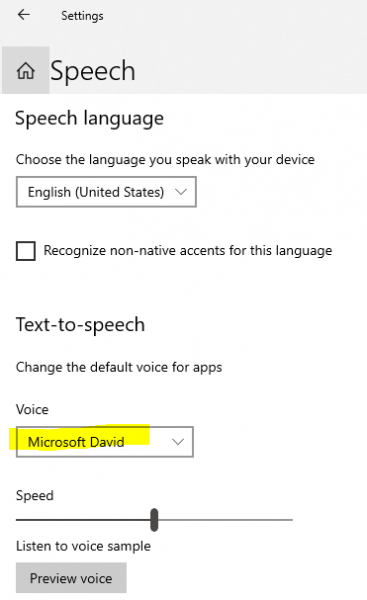 speech settings choose voice